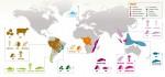 Les zones de conservation prioritaires de matières premières selon WWF.